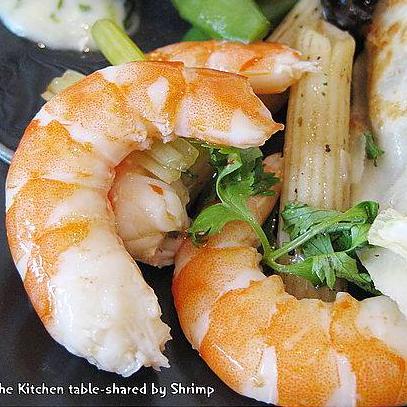 Shrimp^2不負責任的人生紀錄