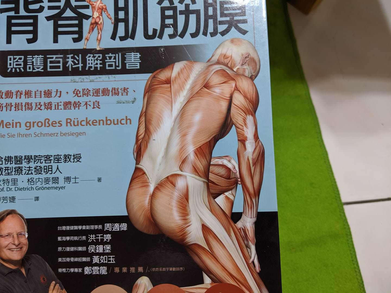 背脊肌筋膜讀書心得讀後感解剖