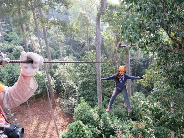泰國清邁。Jungle Flight 叢林滑翔~極速體驗 享樂人生
