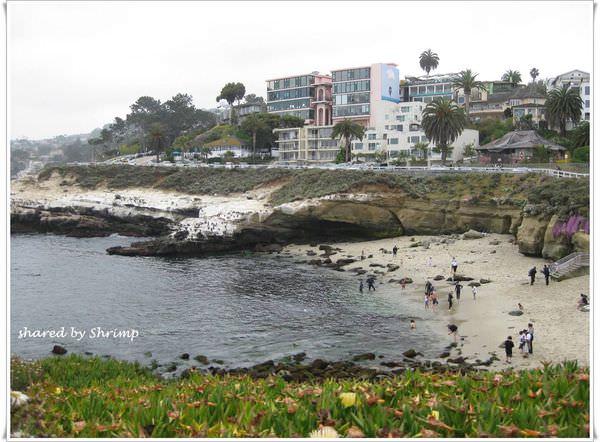 《美國加州》San Diego~La Jolla Cove 拉荷亞海灣 典型加州海岸風情